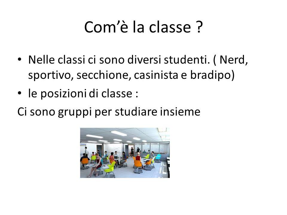 Com'è la classe ? Nelle classi ci sono diversi studenti. ( Nerd, sportivo, secchione, casinista e bradipo) le posizioni di classe : Ci sono gruppi per
