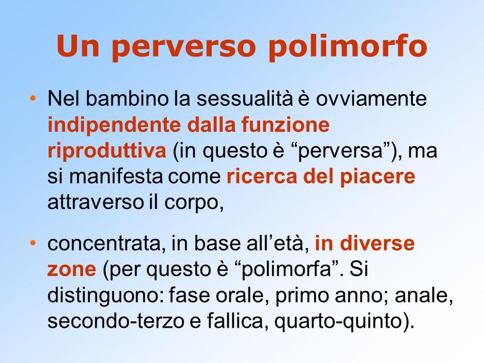 """Un perverso polimorfo Nel bambino la sessualità è ovviamente indipendente dalla funzione riproduttiva (in questo è """"perversa""""), ma si manifesta come r"""