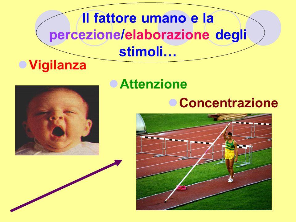 Il fattore umano e la percezione/elaborazione degli stimoli… Vigilanza Attenzione Concentrazione