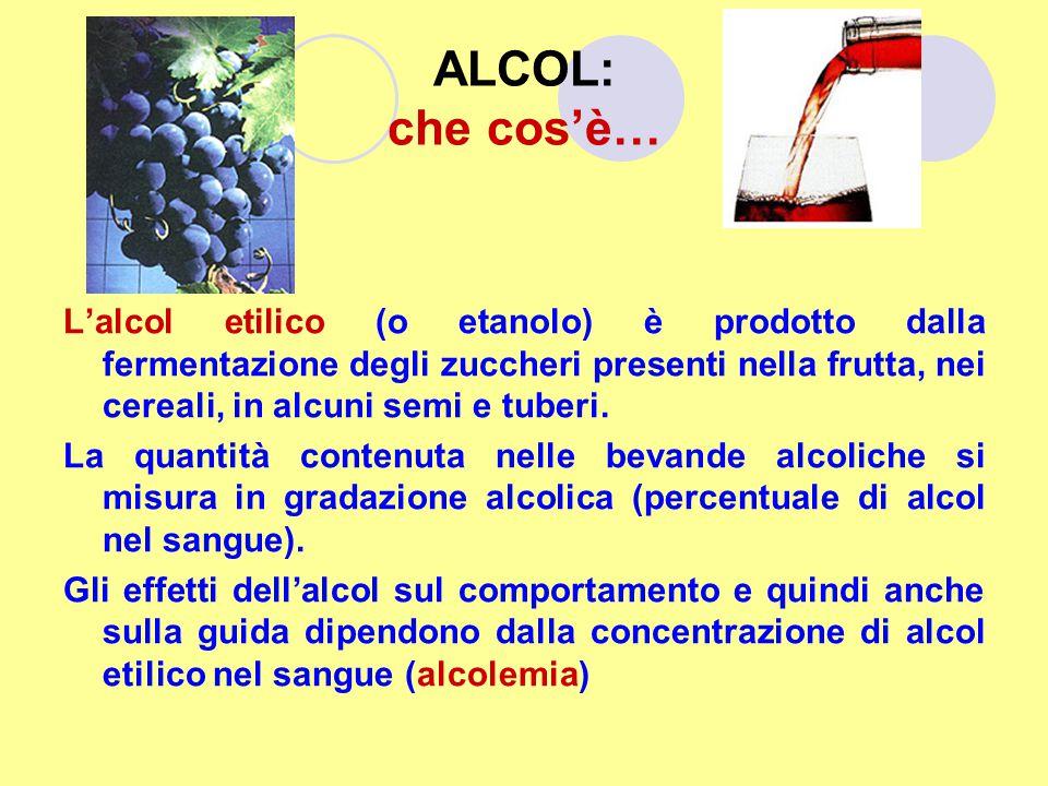 ALCOL: che cos'è… L'alcol etilico (o etanolo) è prodotto dalla fermentazione degli zuccheri presenti nella frutta, nei cereali, in alcuni semi e tuber