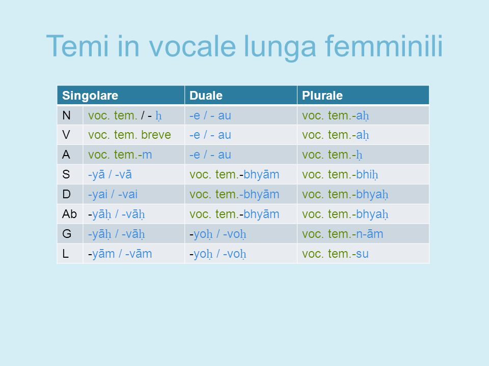 Temi in vocale lunga femminili SingolareDualePlurale N voc.