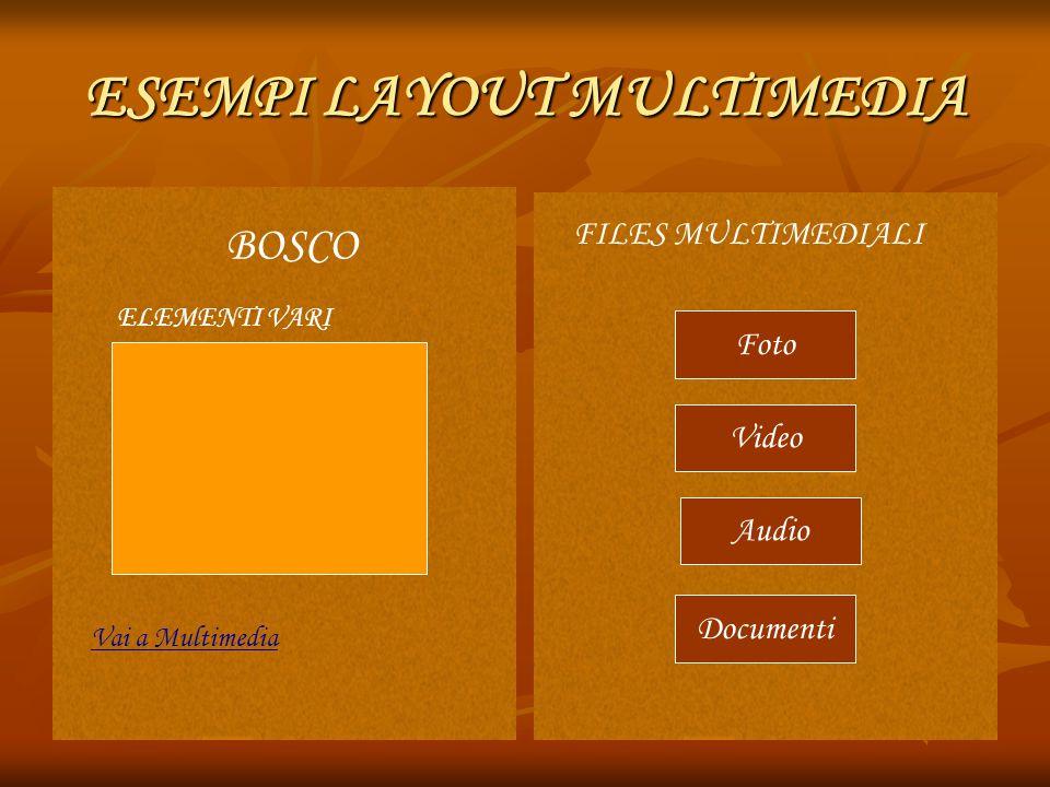ESEMPI LAYOUT MULTIMEDIA BOSCO ELEMENTI VARI Vai a Multimedia FILES MULTIMEDIALI Video Audio Documenti Foto