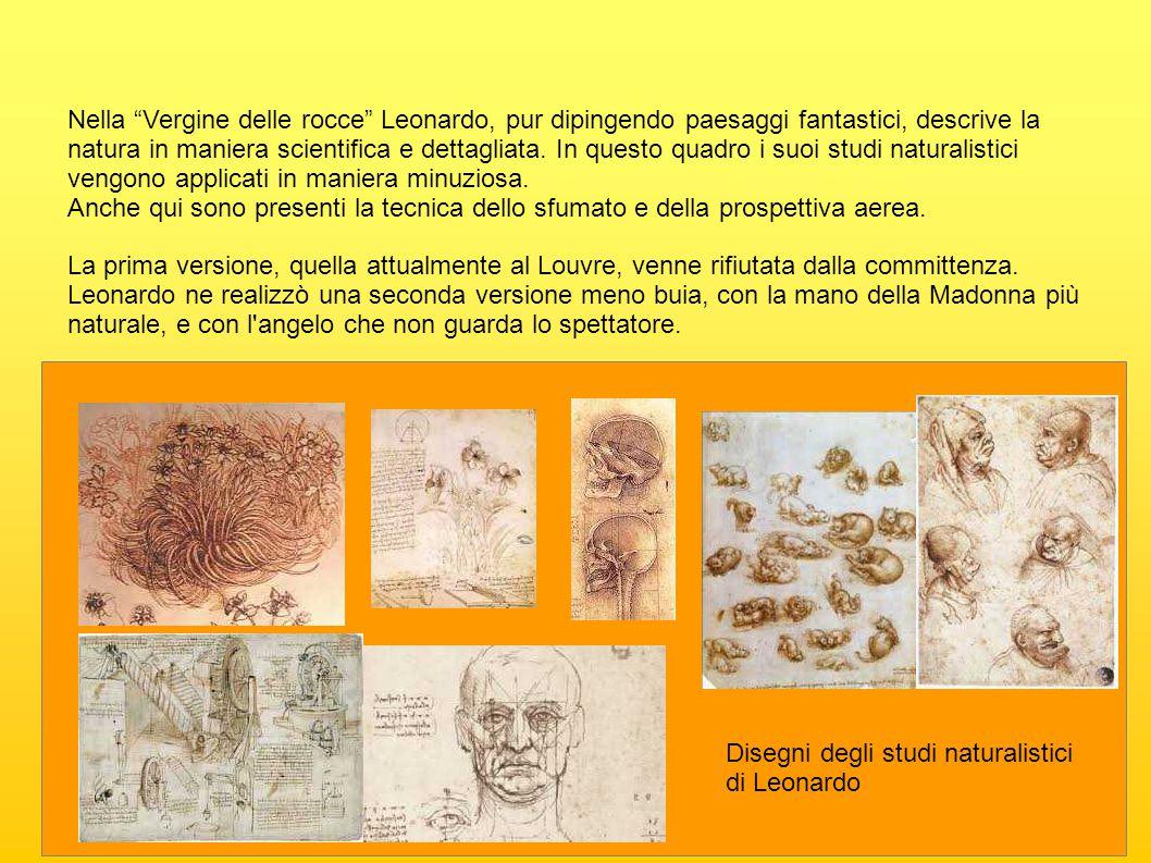 """Nella """"Vergine delle rocce"""" Leonardo, pur dipingendo paesaggi fantastici, descrive la natura in maniera scientifica e dettagliata. In questo quadro i"""