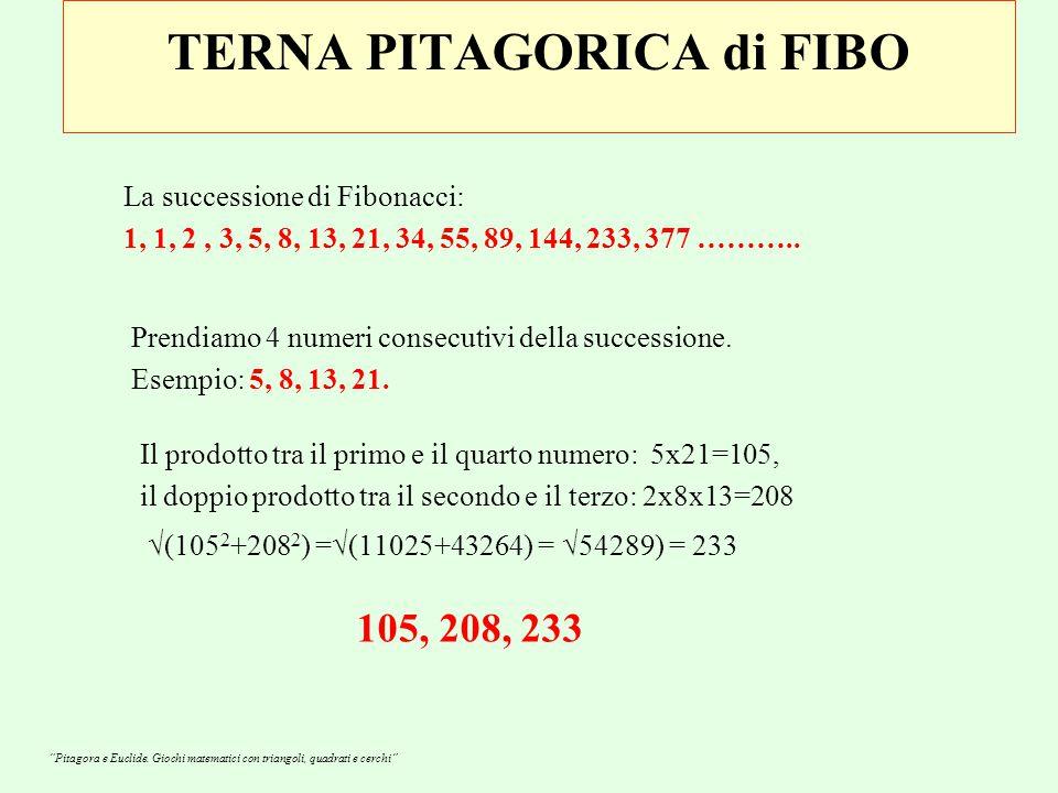 TERNA PITAGORICA di FIBO La successione di Fibonacci: 1, 1, 2, 3, 5, 8, 13, 21, 34, 55, 89, 144, 233, 377 ………..