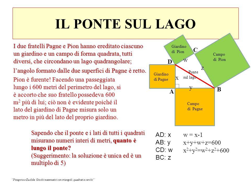 IL PONTE SUL LAGO Campo di Pion Giardino di Pion Giardino di Pagne Campo di Pagne Ponte sul lago B A D C AD: x AB: y CD: w BC: z w = x-1 x+y+w+z=600 x 2 +y 2 =w 2 +z 2 +600 I due fratelli Pagne e Pion hanno ereditato ciascuno un giardino e un campo di forma quadrata, tutti diversi, che circondano un lago quadrangolare; l'angolo formato dalle due superfici di Pagne è retto.