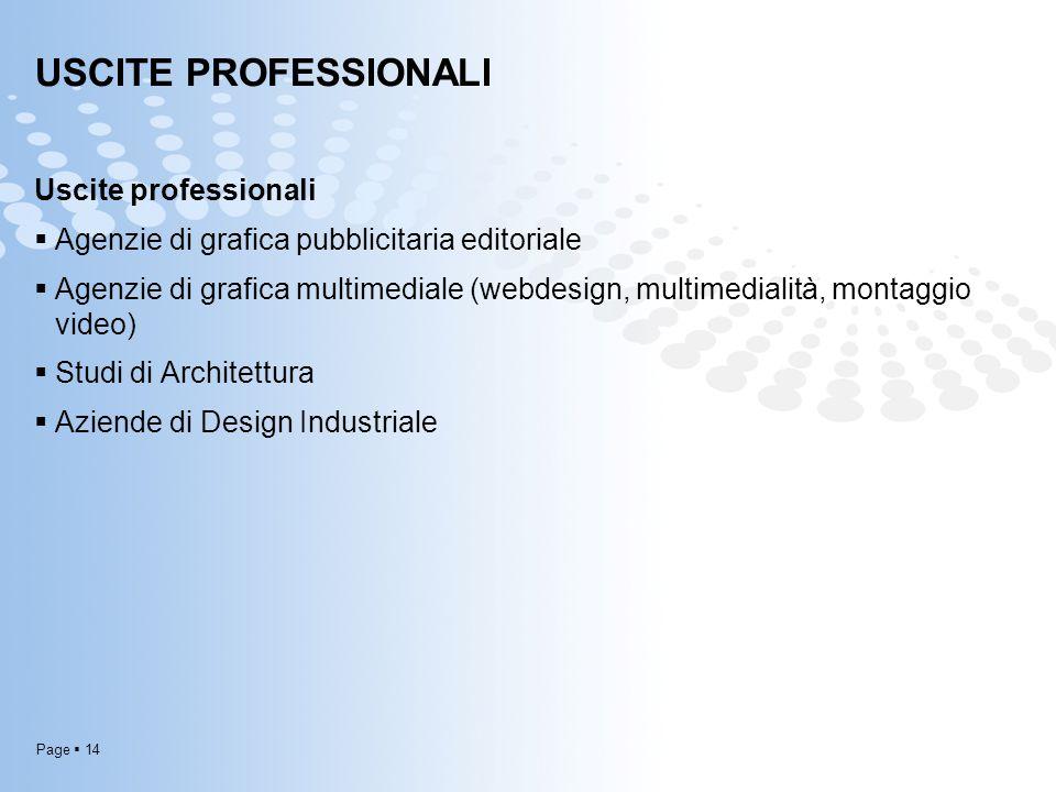 Page  14 USCITE PROFESSIONALI Uscite professionali  Agenzie di grafica pubblicitaria editoriale  Agenzie di grafica multimediale (webdesign, multim