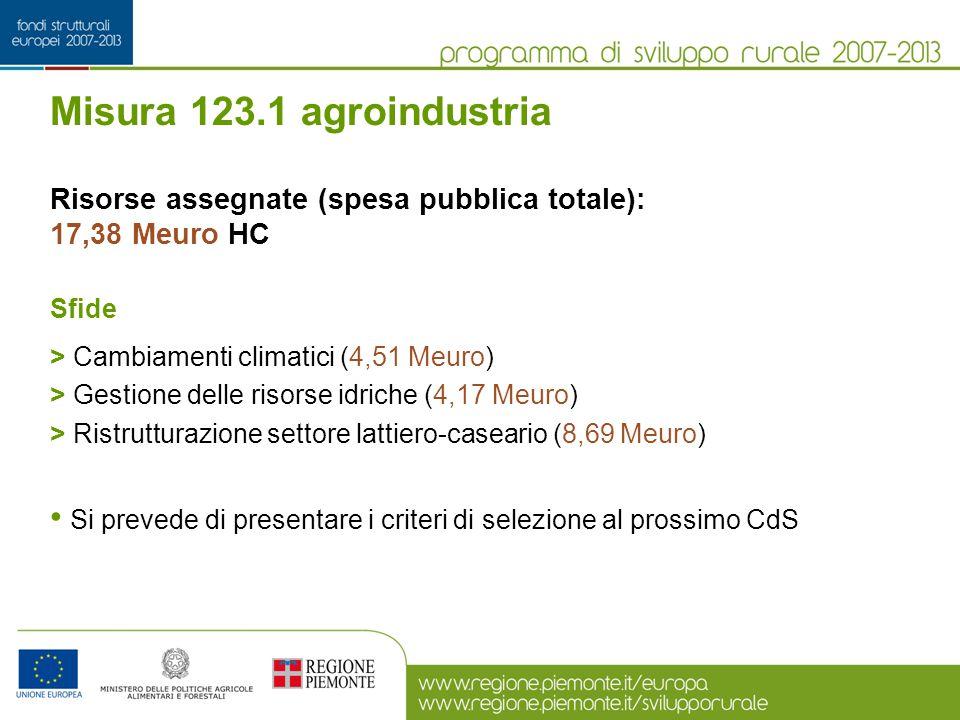Misura 123.1 agroindustria Risorse assegnate (spesa pubblica totale): 17,38 Meuro HC Sfide > Cambiamenti climatici (4,51 Meuro) > Gestione delle risor