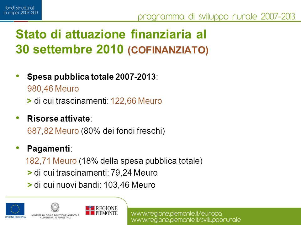 Stato di attuazione finanziaria al 30 settembre 2010 (COFINANZIATO) Spesa pubblica totale 2007-2013: 980,46 Meuro > di cui trascinamenti: 122,66 Meuro