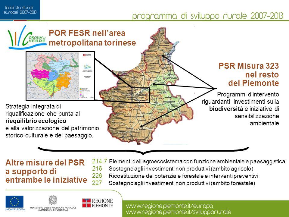 PSR Misura 323 nel resto del Piemonte Programmi d'intervento riguardanti investimenti sulla biodiversità e iniziative di sensibilizzazione ambientale