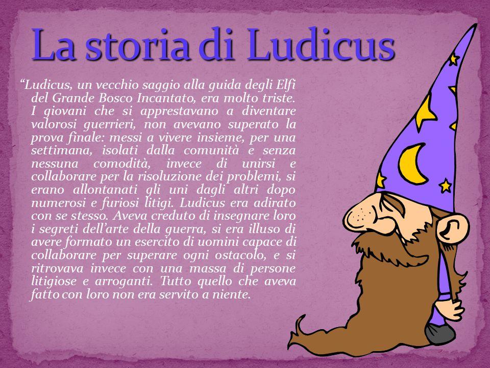 """""""Ludicus, un vecchio saggio alla guida degli Elfi del Grande Bosco Incantato, era molto triste. I giovani che si apprestavano a diventare valorosi gue"""