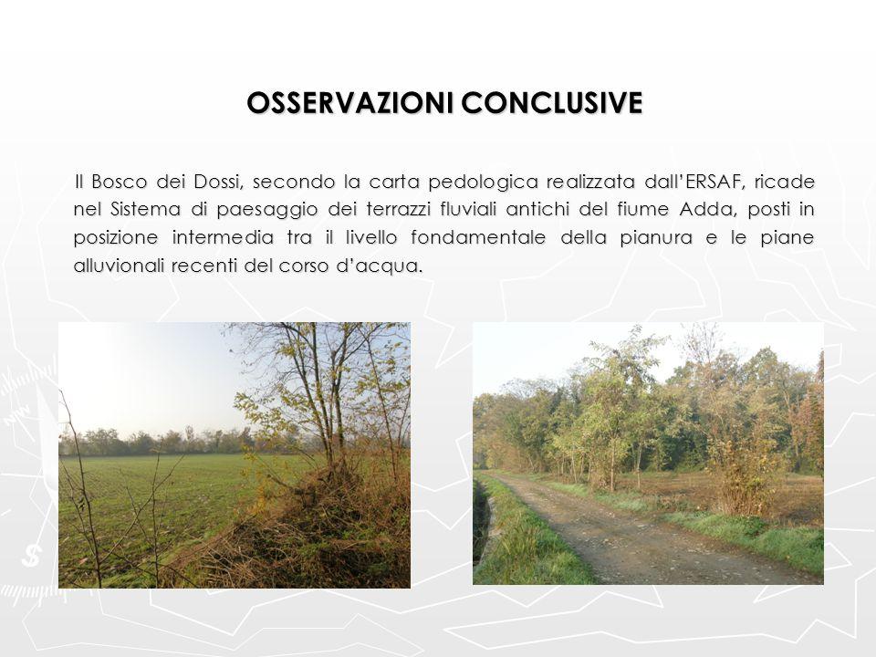 OSSERVAZIONI CONCLUSIVE Il Bosco dei Dossi, secondo la carta pedologica realizzata dall'ERSAF, ricade nel Sistema di paesaggio dei terrazzi fluviali a