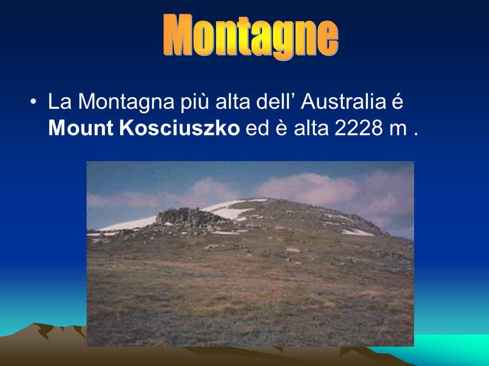 La Montagna più alta dell' Australia é Mount Kosciuszko ed è alta 2228 m.