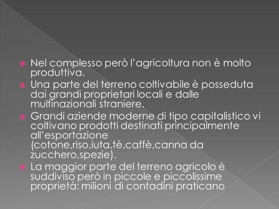  Nel complesso però l'agricoltura non è molto produttiva.  Una parte del terreno coltivabile è posseduta dai grandi proprietari locali e dalle multi