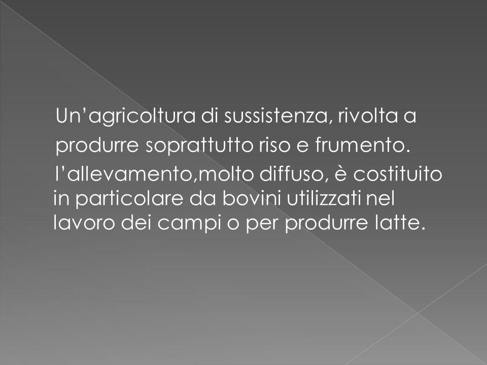 Un'agricoltura di sussistenza, rivolta a produrre soprattutto riso e frumento. l'allevamento,molto diffuso, è costituito in particolare da bovini util