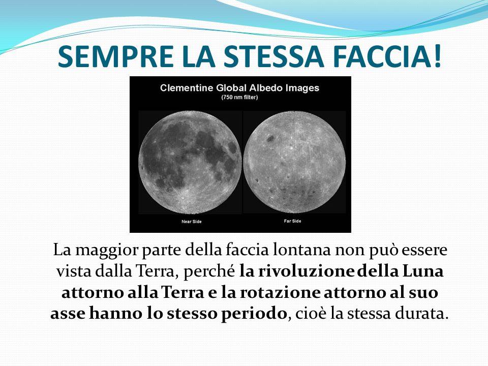 SEMPRE LA STESSA FACCIA! La maggior parte della faccia lontana non può essere vista dalla Terra, perché la rivoluzione della Luna attorno alla Terra e