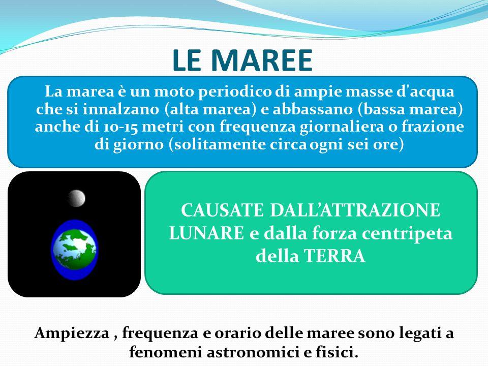 LE MAREE La marea è un moto periodico di ampie masse d'acqua che si innalzano (alta marea) e abbassano (bassa marea) anche di 10-15 metri con frequenz