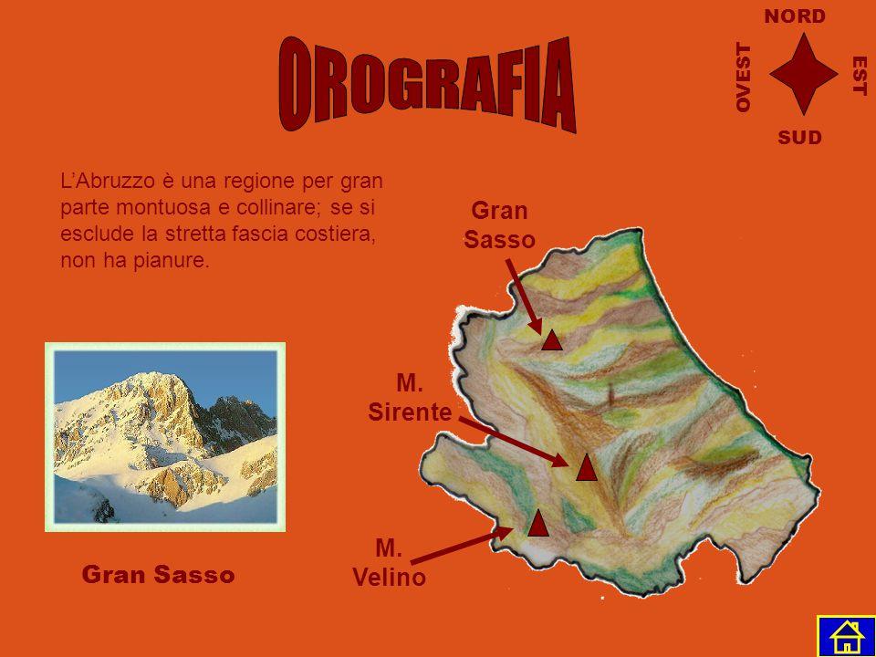 Mare Adriatico Marche Lazio Molise L'Abruzzo confina a nord con le Marche, a est con il Mar Adriatico, a sud con il Molise e a ovest con il Lazio. NOR