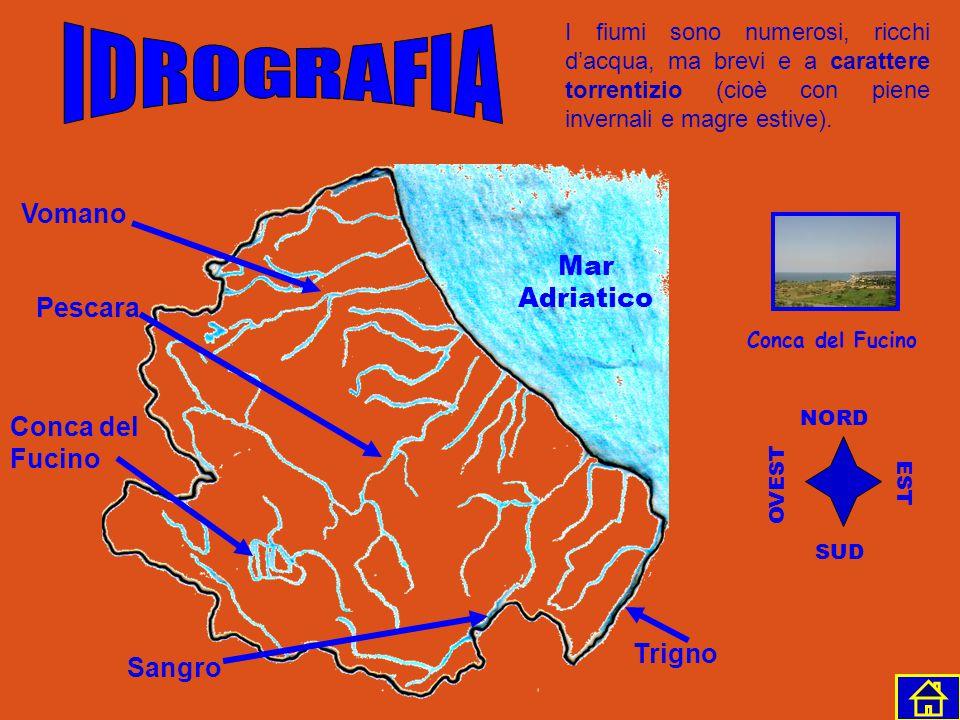 Gran Sasso M. Velino M. Sirente Gran Sasso NORD SUD EST OVEST L'Abruzzo è una regione per gran parte montuosa e collinare; se si esclude la stretta fa