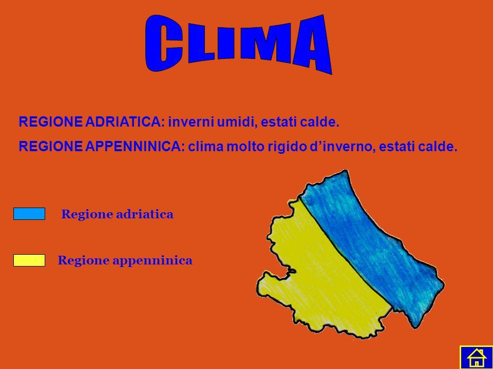 Conca del Fucino Mar Adriatico Sangro Vomano Pescara Trigno NORD SUD EST OVEST I fiumi sono numerosi, ricchi d'acqua, ma brevi e a carattere torrentiz