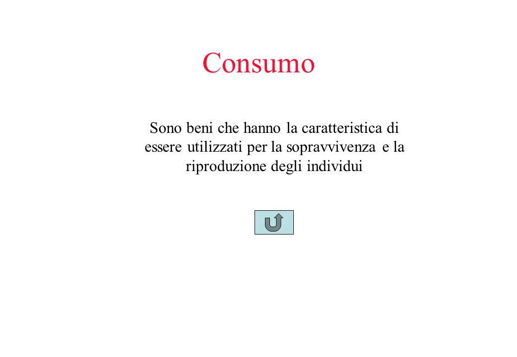 Consumo Sono beni che hanno la caratteristica di essere utilizzati per la sopravvivenza e la riproduzione degli individui