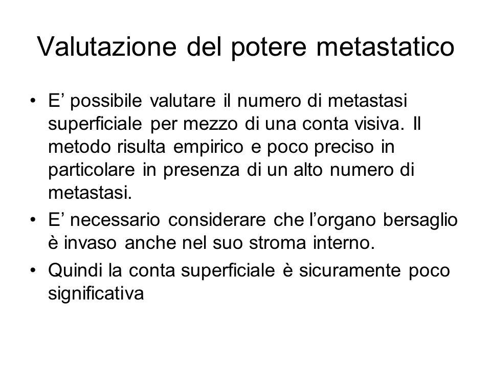 Valutazione del potere metastatico E' possibile valutare il numero di metastasi superficiale per mezzo di una conta visiva. Il metodo risulta empirico