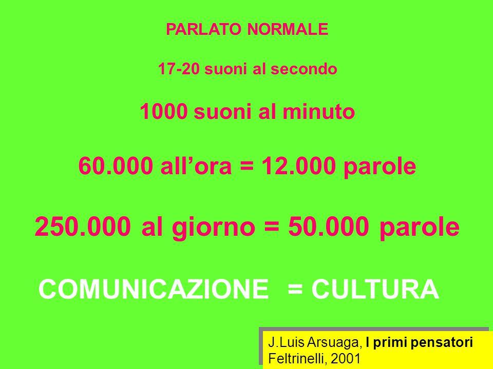 PARLATO NORMALE 17-20 suoni al secondo 1000 suoni al minuto 60.000 all'ora = 12.000 parole 250.000 al giorno = 50.000 parole J.Luis Arsuaga, I primi pensatori Feltrinelli, 2001 J.Luis Arsuaga, I primi pensatori Feltrinelli, 2001 COMUNICAZIONE = CULTURA