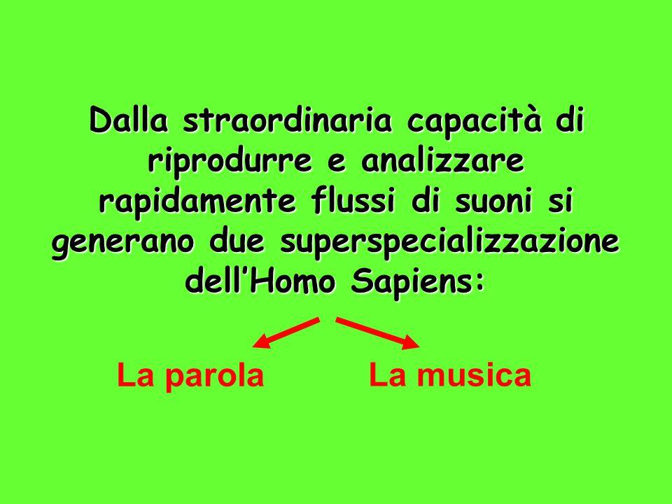 Dalla straordinaria capacità di riprodurre e analizzare rapidamente flussi di suoni si generano due superspecializzazione dell'Homo Sapiens: La parola La musica