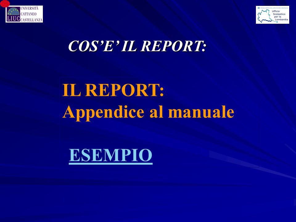 IL REPORT: Appendice al manuale ESEMPIO COS'E' IL REPORT: