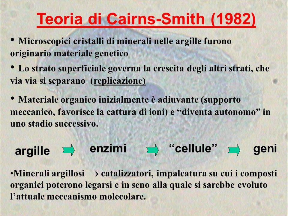 Teoria di Cairns-Smith (1982) Lo strato superficiale governa la crescita degli altri strati, che via via si separano (replicazione) Microscopici crist