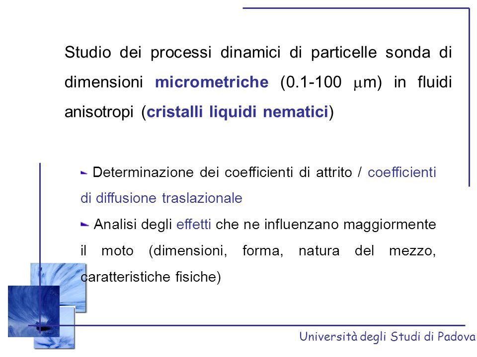 Università degli Studi di Padova TRENDS Per tutti i cristalli liquidi studiati il coefficiente di attrito  risulta sempre maggiore di quello // (Moseley e Lowenstein 1,2 ) Aumentando il rapporto tra i semiassi nelle geometrie ellissoidali (passando dalla forma oblata a quella prolata) diminuiscono i valori dei coefficienti di attrito [1] M.E.