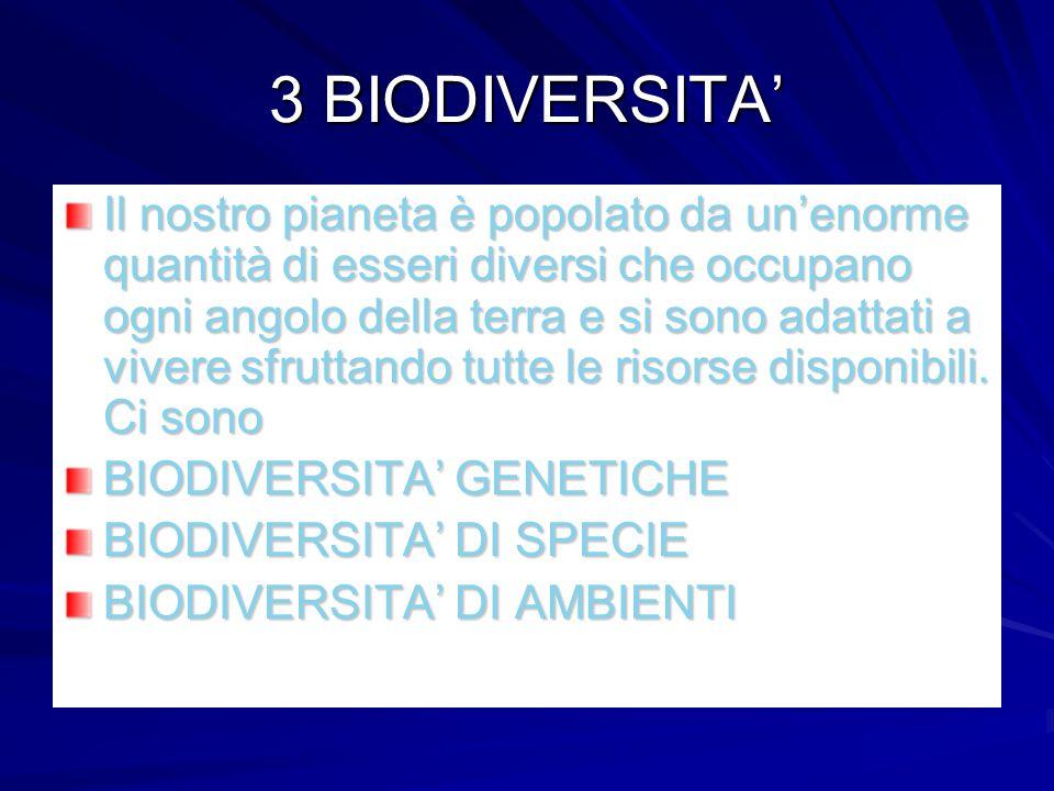 3 BIODIVERSITA' Il nostro pianeta è popolato da un'enorme quantità di esseri diversi che occupano ogni angolo della terra e si sono adattati a vivere