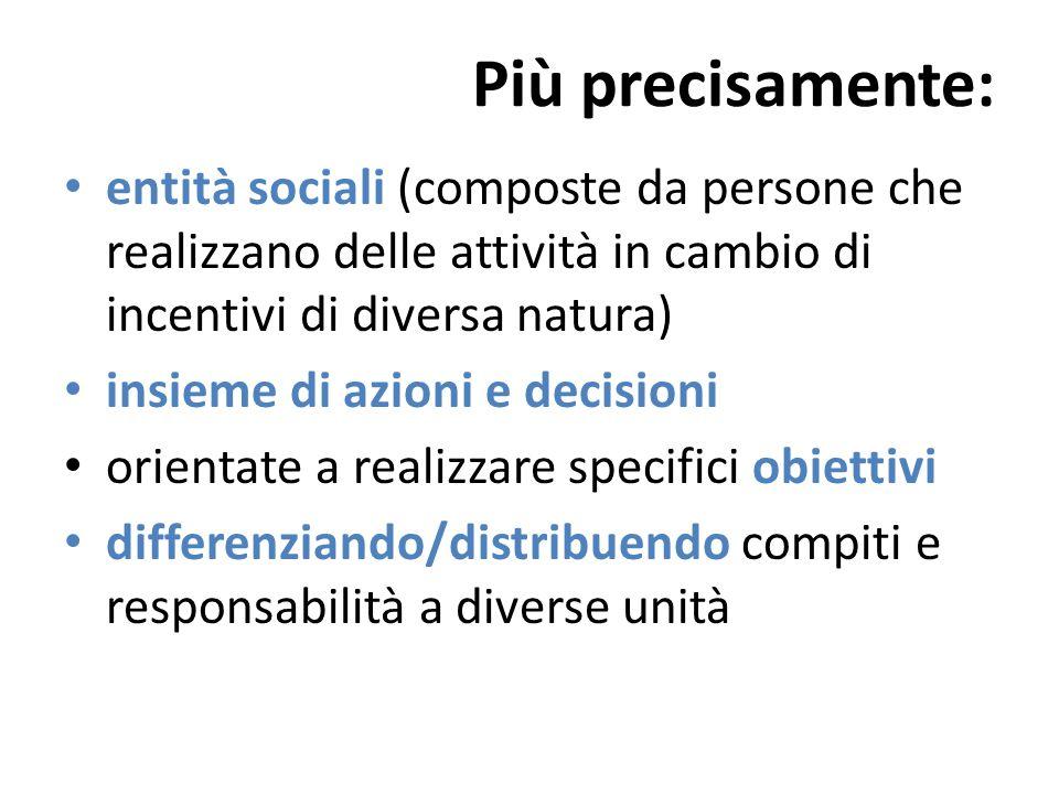 Più precisamente: entità sociali (composte da persone che realizzano delle attività in cambio di incentivi di diversa natura) insieme di azioni e deci
