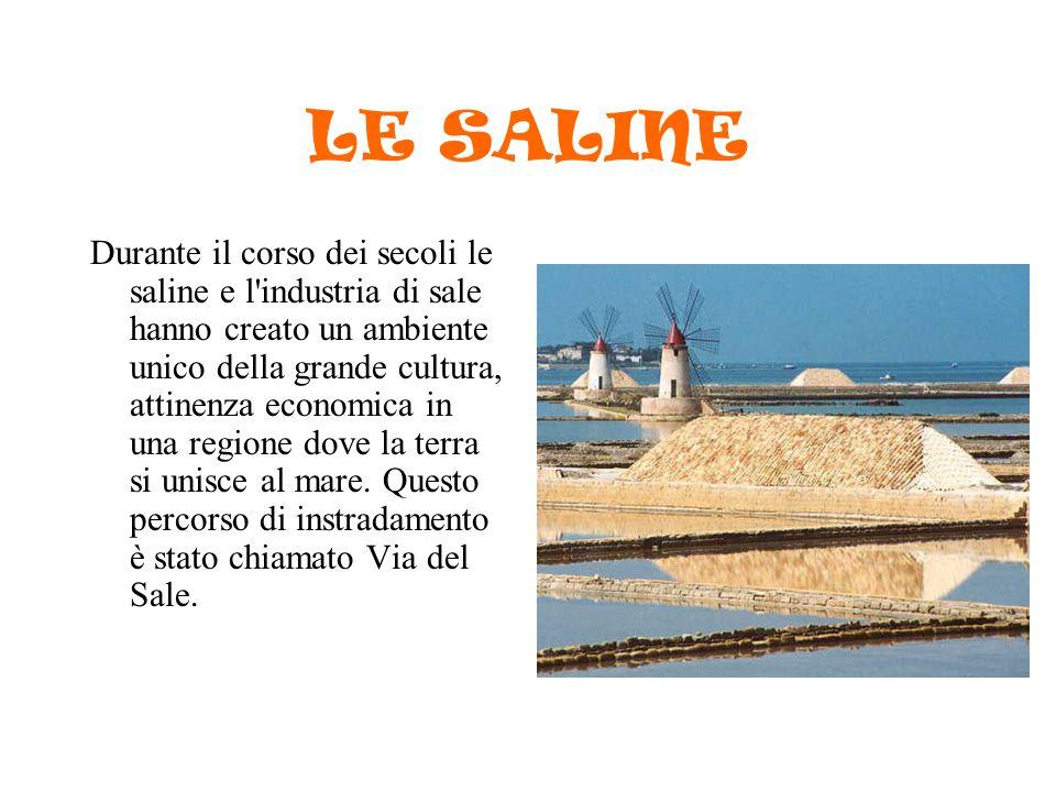 LE SALINE Durante il corso dei secoli le saline e l'industria di sale hanno creato un ambiente unico della grande cultura, attinenza economica in una