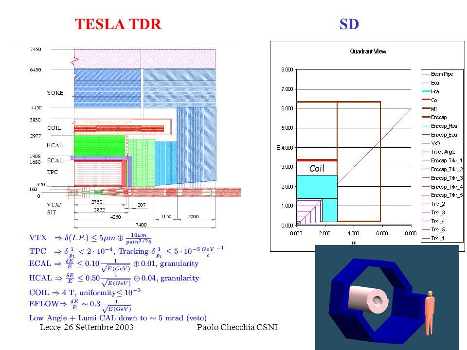 Lecce 26 Settembre 2003Paolo Checchia CSNI6 Tracking: Rivelatore di vertice TESLA configurazioni per tutte le tecnologie ( e tutte le regioni): Pixels (3D)  1 Gpixel strato interno vicino P.I..