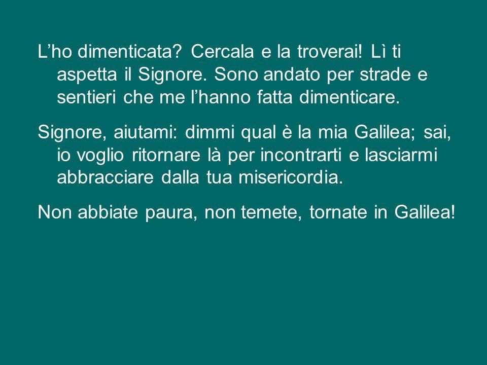 Oggi, in questa notte, ognuno di noi può domandarsi: qual è la mia Galilea.