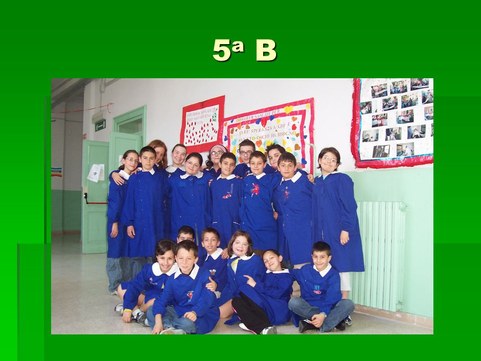 5a B5a B5a B5a B