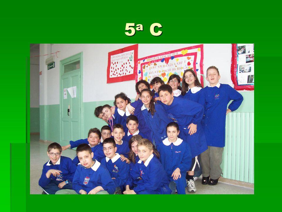 5a C5a C5a C5a C