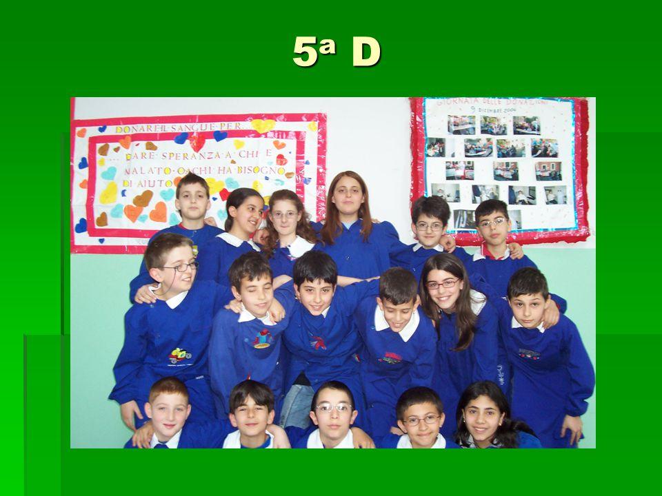5a D5a D5a D5a D