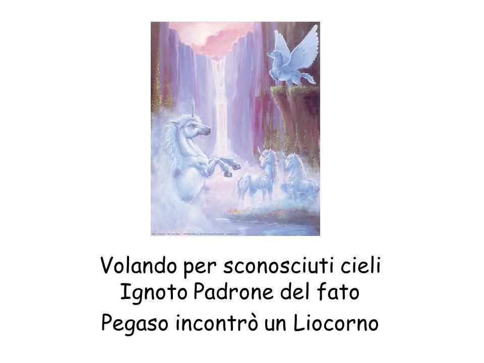 Ignoto Padrone del fato Pegaso incontrò un Liocorno