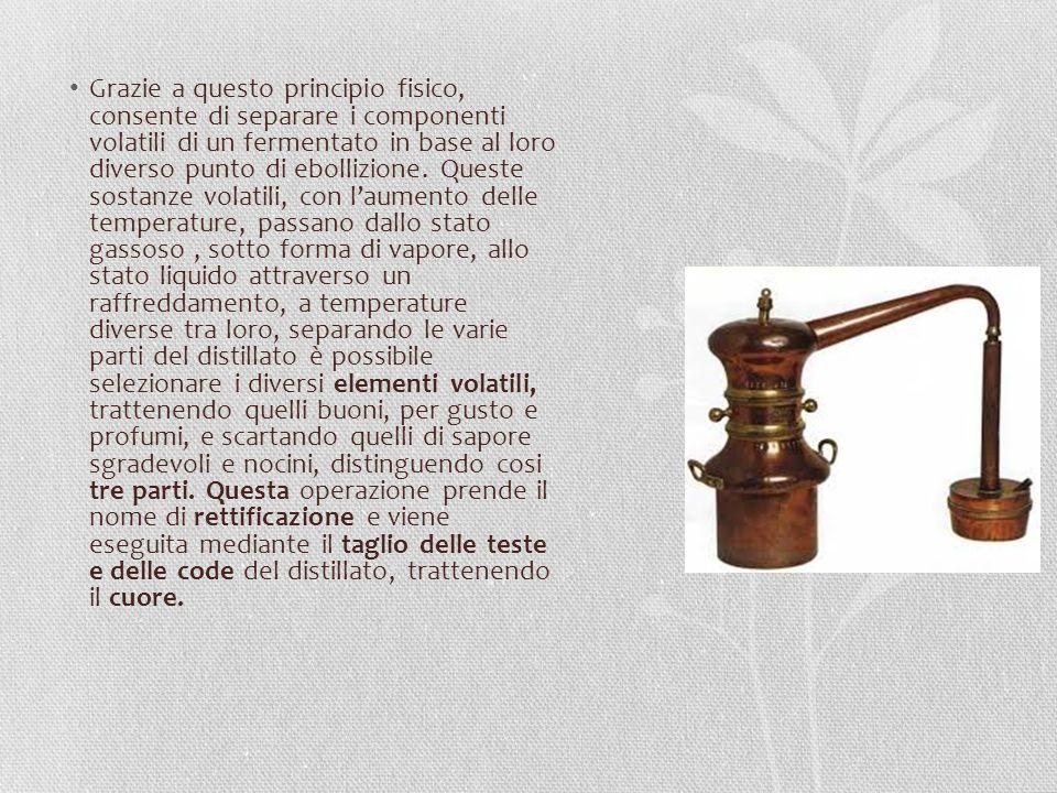La Testa è la prima parte del distillato ad uscire dall alambicco e contiene prevalentemente sostanze che conferirebbero al prodotto un odore acre e sgradevole, oltre a una piccola parte di alcol metilico, che è tossico, e quindi va eliminato.