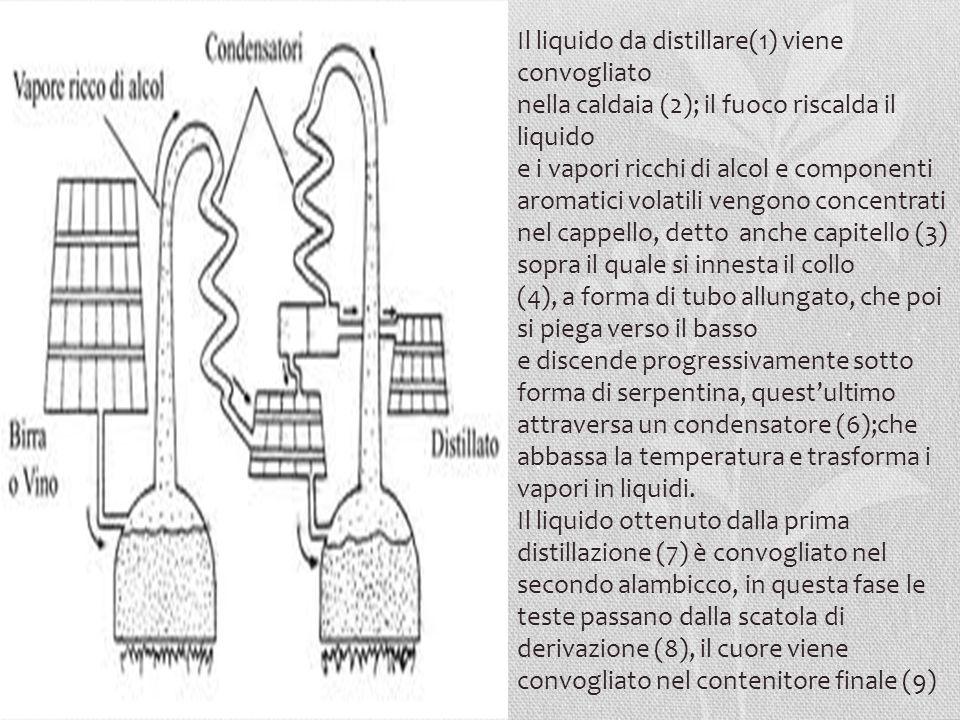 Il liquido da distillare(1) viene convogliato nella caldaia (2); il fuoco riscalda il liquido e i vapori ricchi di alcol e componenti aromatici volati