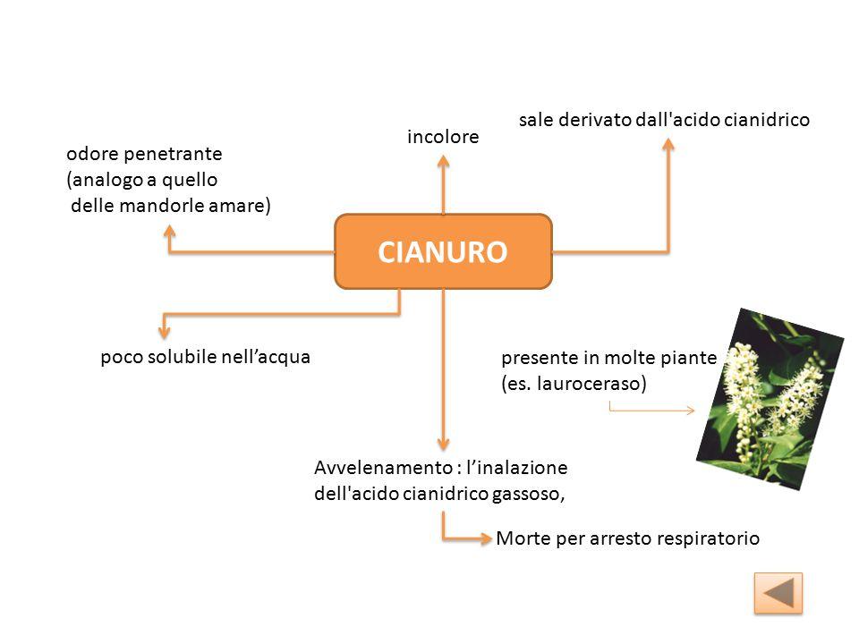 CIANURO sale derivato dall acido cianidrico Avvelenamento : l'inalazione dell acido cianidrico gassoso, incolore odore penetrante (analogo a quello delle mandorle amare) poco solubile nell'acqua presente in molte piante (es.