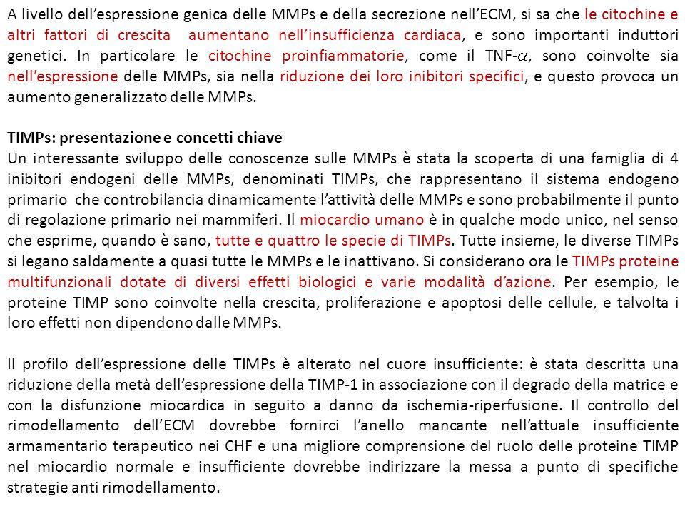 A livello dell'espressione genica delle MMPs e della secrezione nell'ECM, si sa che le citochine e altri fattori di crescita aumentano nell'insufficie