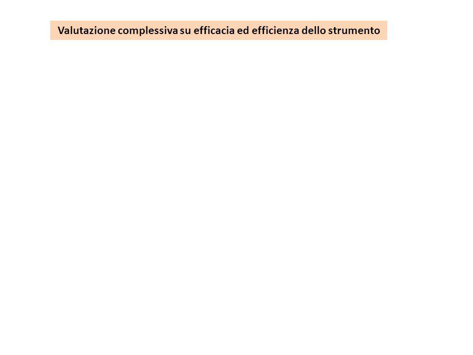 Valutazione complessiva su efficacia ed efficienza dello strumento