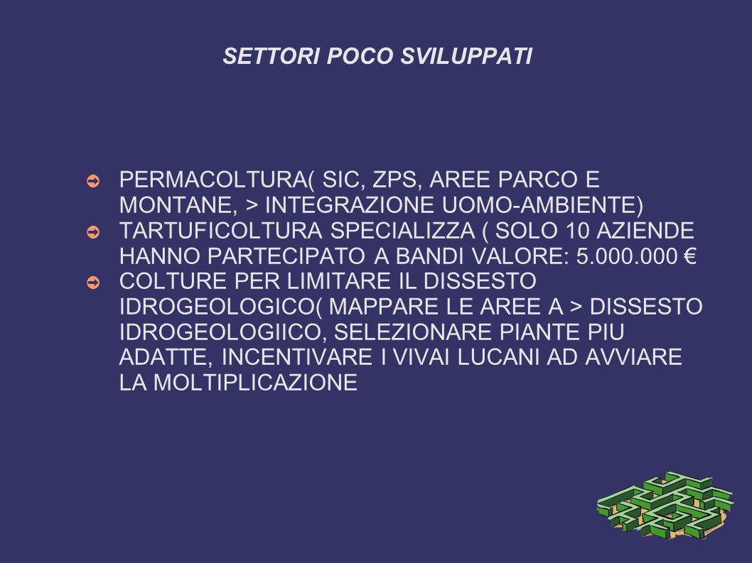 SETTORI POCO SVILUPPATI ➲ PERMACOLTURA( SIC, ZPS, AREE PARCO E MONTANE, > INTEGRAZIONE UOMO-AMBIENTE) ➲ TARTUFICOLTURA SPECIALIZZA ( SOLO 10 AZIENDE HANNO PARTECIPATO A BANDI VALORE: 5.000.000 € ➲ COLTURE PER LIMITARE IL DISSESTO IDROGEOLOGICO( MAPPARE LE AREE A > DISSESTO IDROGEOLOGIICO, SELEZIONARE PIANTE PIU ADATTE, INCENTIVARE I VIVAI LUCANI AD AVVIARE LA MOLTIPLICAZIONE