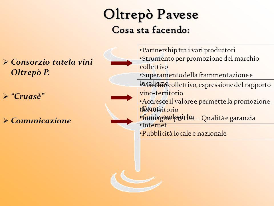 """Oltrepò Pavese Cosa sta facendo:  Consorzio tutela vini Oltrepò P.  """"Cruasè""""  Comunicazione Partnership tra i vari produttori Strumento per promozi"""