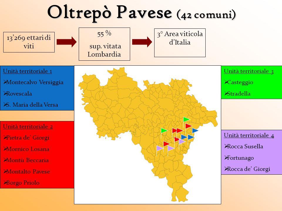 Oltrepò Pavese (42 comuni) 13'269 ettari di viti 55 % sup. vitata Lombardia 3° Area viticola d'Italia Unità territoriale 1  Montecalvo Versiggia  Ro