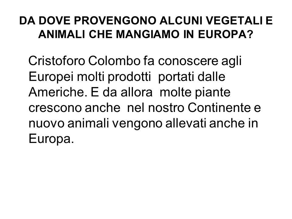 DA DOVE PROVENGONO ALCUNI VEGETALI E ANIMALI CHE MANGIAMO IN EUROPA.