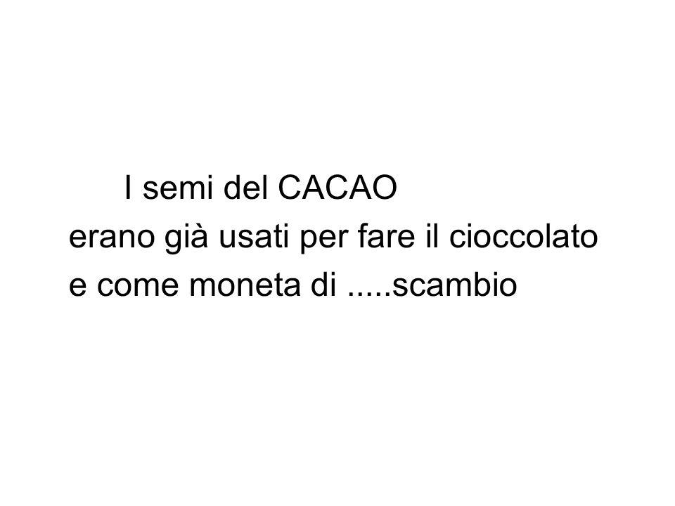 I semi del CACAO erano già usati per fare il cioccolato e come moneta di.....scambio