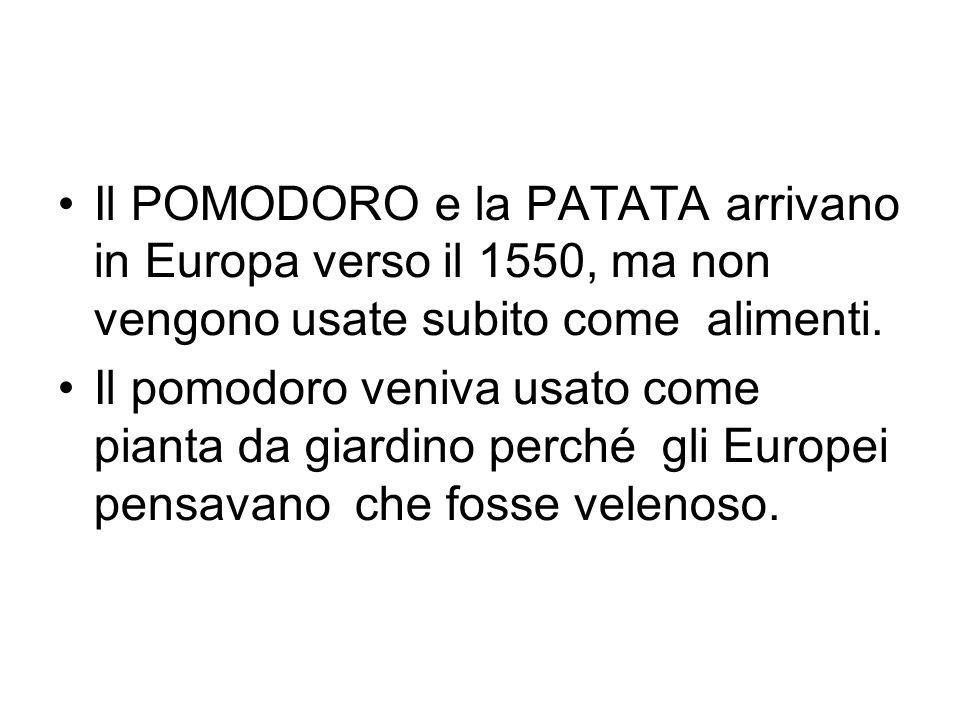 Il POMODORO e la PATATA arrivano in Europa verso il 1550, ma non vengono usate subito come alimenti.